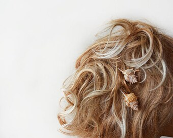 Sea Shells Wedding Hair Bobby Pin Set, Beach Wedding Hair Pins, She Sells Hair Pin, Weddings, Beach Hair Accessory