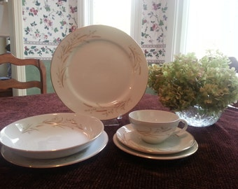 Golden Harvest  China Set, 50 Pieces! Luncheon Set, Afternoon Tea, Made in Japan China Set