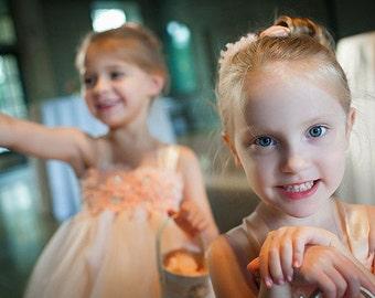 Flower Girl Dress Blush peach tutu dress baby dress toddler birthday dress wedding dress Newborn 1T 2T 3T 4T 5T