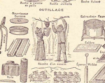 Antique French Print Dictionary Page 1920s Illustrations Bee keeping Apiary Hive Honey