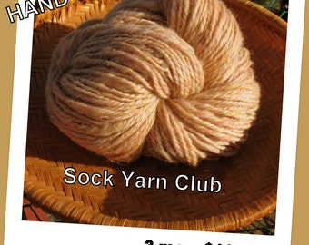 100% Hand Spun Sock Yarn Club