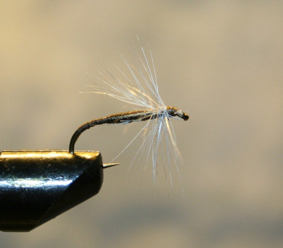 Made in michigan fishing flies olive white spider on number for Fishing spider michigan