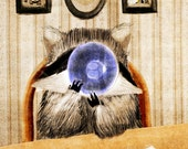 Raccoon Illustration - Breakfast Time