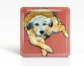 "DOG Art- Rescued Dog ""Ollie"" LABRADOODLE - Glass MAGNET By Artist A.V.Apostle- 2""x 2"""