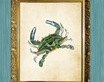 Blue Green Crab Art Print Crab Art 8 x 10 Sea Life Art Print Seaside Art Print Sealife Art Print Natural History Print