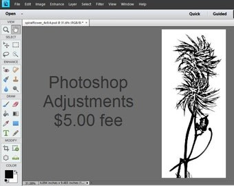 Photoshop Image Adjustments