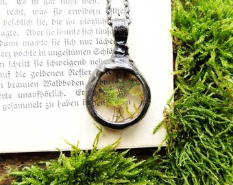 terrarium jewelry, tiny Real Moss Necklace, terrarium necklace, dried moss, Real moss necklace, botanical, real plant jewelry