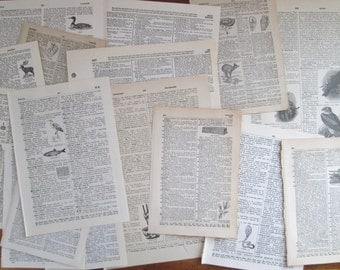 25 Vintage Dictionary Pages Dictionary Paper Illustrated Collage Scrapbooking Altered Art Paper Supplies