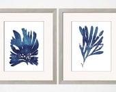 Indigo Wall Art, Beach House Art, Indigo Coral Prints, Indigo Blue, Coastal Wall Art, Nautical Decor, Algae Coral Print, Nautical Bedroom