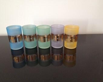 Retro  Mid-Century Amoeba Pastel Glasses Set of 5