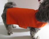 SALE - Small Bright Orange Lightweight Dog Jacket with Collar