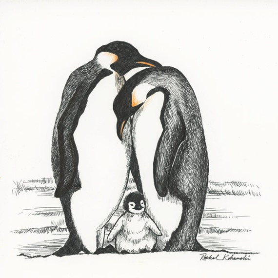 Pen And Ink Drawing Of Penguin Family Print