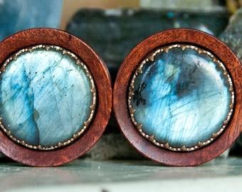 Blood Wood plugs with Labradorite Crown setting