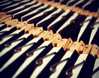 10 Wedding Clothespins