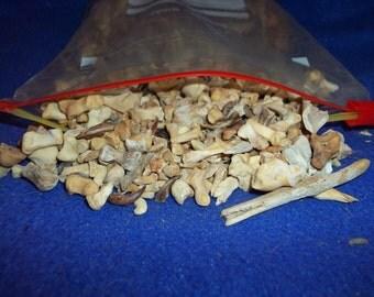Real bone assorted animal teeth claws part taxidermy jaw skull weird