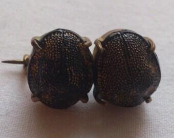 Antique Victorian scarab beetle brooch