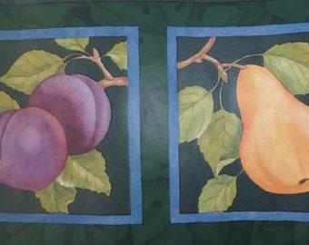 SEABROOK  Dk Green Fruit VINTAGE Wallpaper Border CTC263B Blue, Yellow, Purple, Red, Plums, Cherries, Apples, Pears, Peaches, Framed