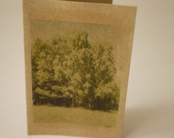 note card - Tree ________________________ recycled A7 small greeting card with envelope