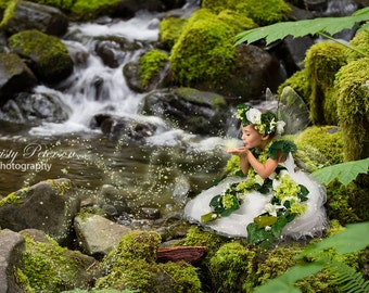 Mossy Rock by Pond Digital Background for composite Fairy Photography