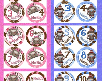 24 Monthly Stickers Month to Month Baby Twin gift baby stickers Milestone stickers Baby Boy Baby Girl Monkey nursery Bodysuit stickers decal