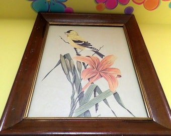 Vintage Framed Art Print On Board Yellow Bird On Branch