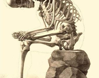 "Skeleton Sitting, 1867 Bones, Death, Skull. 8x10"" Satin Canvas Print, goth"