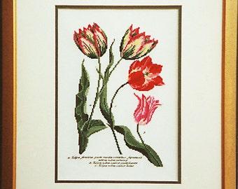 Tryon Tulipa Tulips Cross Stitch PDF Chart