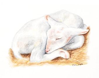 Baby Animal Watercolor, Lamb Nursery Art, Farm Animal, Baby Lamb, Lamb Nursery, Baby Lamb, Baby Room Decor, Farm Nursery, Baby Animal 11x14