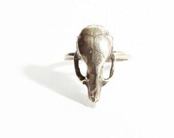 Mus Ring . Mouse Skull