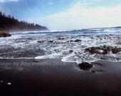 Olympic National Park Pac...