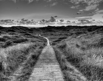 The Boardwalk - Famous boardwalk at braunton burrows - North Devon - Sand Dunes - landscape photography