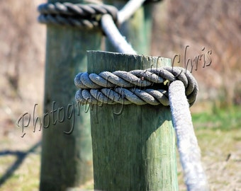 The Ropes      Capemay New Jersey