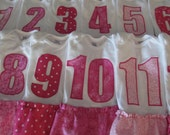 CLEARANCE SALE ----  Monthly Onesie Dress Set 1-12 for Baby Girl, baby shower gift, pink