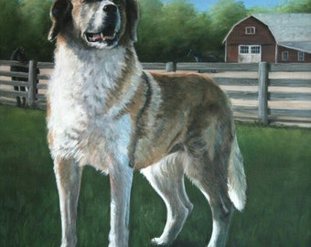 Hand Painted Pet Portraits -  commissioned