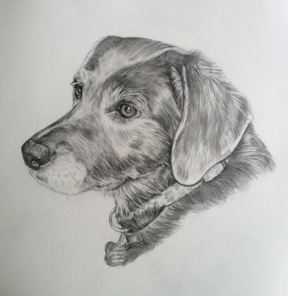 Articles similaires chien personnalis dessin dog - Dessin d un chien ...