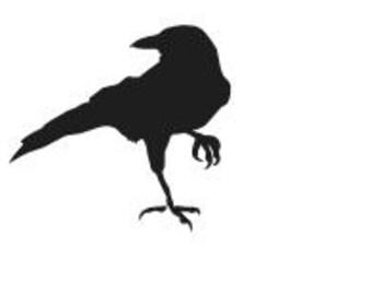 CROW RAVEN BLACKBIRD Vinyl Decal Sticker Car Window Laptop Wall Choose Color