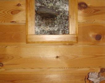 Birch bark in pine frame
