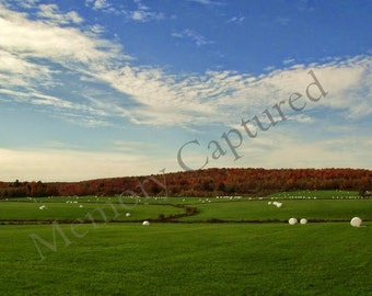 Summer Field Photography Blue Sky Bales of Hay Bucolic Nature Scenery Home Decor Photo Digital Download