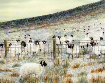 """Greetings card: """"A frosty reception"""" - sheep card, animal card, snow scene, winter birthday card from an original painting by Dave Marsh"""