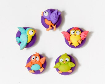 Silly Bird Magnets Back to School Children's Room Decor in Bright Rainbow Colors Office, School, Unisex Birthday Spring Play Room Decoration