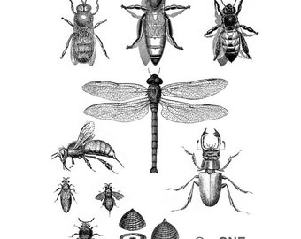 Insects Black and White - Collage Sheet - A4 Digital Collage Sheet - For unlimited number of prints