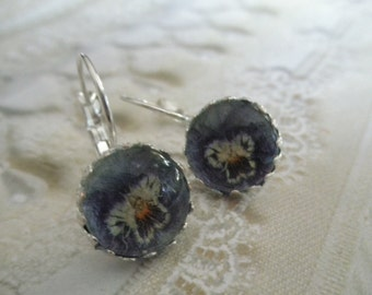 Pansy In Periwinkle Blue,White,Yellow Beneath Glass-Crown Leverback Victorian Pressed Flower Earrings-Symbolizes Loyalty-Gifts Under 30