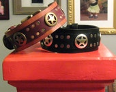 Leather Dog Collar Texas Ranger