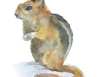 Chipmunk Watercolor Painting Giclee Print - 8 x 10 - 8.5 x 11 - Woodland Animal - Nursery Art