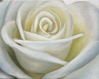 White Rose - Original Oil Painting