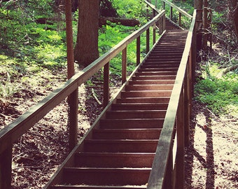 Vintage Style Stairway in Forest Woodsy Landscape Photo