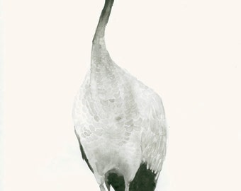 Fine Art Print from Original Watercolour Painting Crane