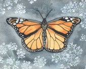 "Monarch Butterfly and Queen Anne's Lace - Watercolor Painting - Summer Home Decor - 5"" x 7"""
