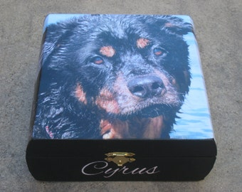 Pet Memorial Keepsake Box, Pet Urn, Personalized Photo Keepsake Box, Unique Dog Memorial, Custom Cat Memorial, Pet Gift Memory Box
