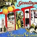 Greetings From Florida Large Letter Postcard Digital Image Download No. 5168